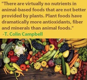 About Plant-Based Nutrition. Dr Colin Campbell quote and fruits veggies pic